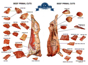 Beef-Primal-Cuts-Small